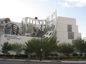 LV Brain Center Building - 2